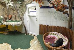 hundepension simmern kunstleder und leder reparatur set. Black Bedroom Furniture Sets. Home Design Ideas